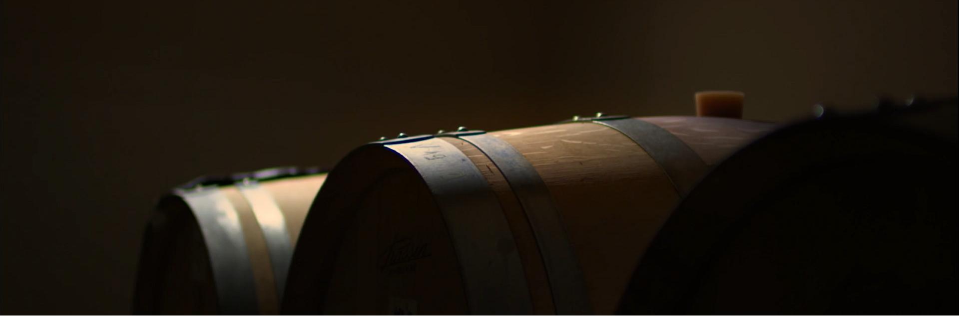 Vins d'Alsace Collection Exception