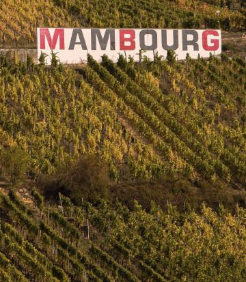 Grand Cru WinesRiesling Grand Cru Mambourg