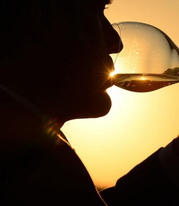 degustation-verre-vin