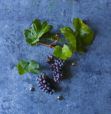 Que manger avec un Pinot Gris ?